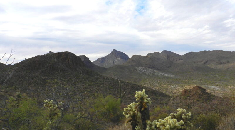 Tucson Mountain Reconnoiter Part II