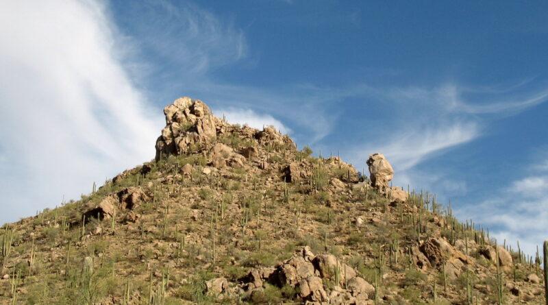 Tucson Mountain Reconnoiter: I